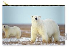 Female Polar Bear With Spring Cub Carry-all Pouch