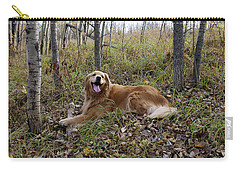 Carry-all Pouch featuring the photograph Happiness Is by Rhonda McDougall