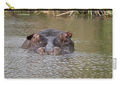 Hippopotamus Hippopotamus Amphibius Carry-all Pouch by Panoramic Images