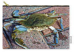 Carry-all Pouch featuring the photograph Hudson River Crab by Lilliana Mendez