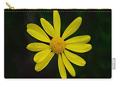 Carry-all Pouch featuring the photograph Isolated Daisy by Debra Martz