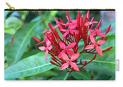 Jamaican Red Carry-all Pouch