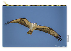 Carry-all Pouch featuring the photograph Osprey In Flight Spreading His Wings by Dale Powell