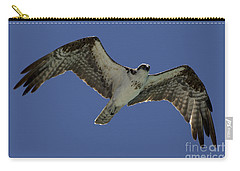 Carry-all Pouch featuring the photograph Osprey In Flight Photo by Meg Rousher