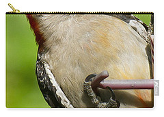 Red Bellied Woodpecker Carry-all Pouch