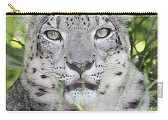 Snow Leopard Carry-all Pouch by John Telfer