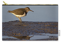 Spotted Sandpiper Reflection Carry-all Pouch