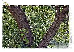 Carry-all Pouch featuring the photograph Tree At Stow Lake by Kate Brown