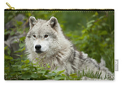 Arctic Wolf Carry-all Pouch
