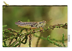 Carry-all Pouch featuring the photograph Grasshopper by Olga Hamilton