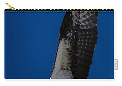 Osprey In Flight Carry-all Pouch by Dale Powell