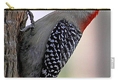 Carry-all Pouch featuring the photograph Red Bellied Woodpecker  by Meg Rousher