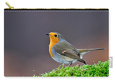 Carry-all Pouch featuring the photograph Robin by Gavin Macrae
