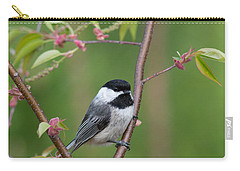 Black-capped Chickadee Poecile Carry-all Pouch
