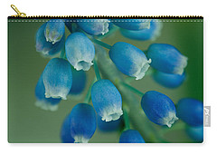 Grape Hyacinth Carry-all Pouch by Nailia Schwarz