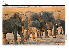 Carry-all Pouch featuring the photograph Kalahari Elephants by Amanda Stadther
