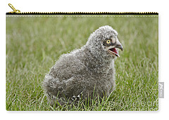Baby Snowy Owl Carry-all Pouch