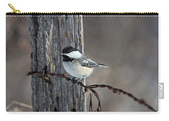 Black-capped Chickadee Poecile Carry-all Pouch by Linda Freshwaters Arndt