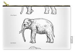 Elephant Evolution, Artwork Carry-all Pouch by Gary Hincks