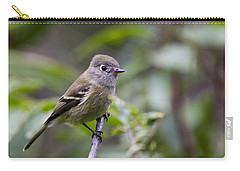 Alder Flycatcher Carry-all Pouch
