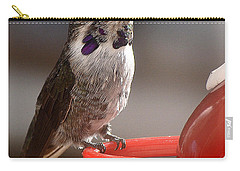 Carry-all Pouch featuring the photograph Female Anna's Sitting On Perch by Jay Milo