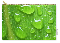 Carry-all Pouch featuring the photograph A Cleansing Morning Rain by Robert ONeil