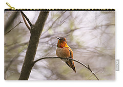 Carry-all Pouch featuring the photograph A Colorful Character by Peggy Collins