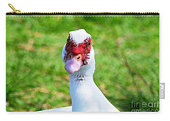 Carry-all Pouch featuring the photograph A Curious Muscovy Duck  by Susan Wiedmann