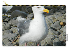 A Curious Seagull Carry-all Pouch by Chalet Roome-Rigdon