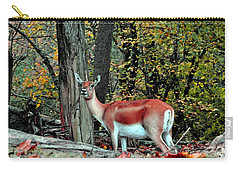 A Deer Look Carry-all Pouch by Lydia Holly