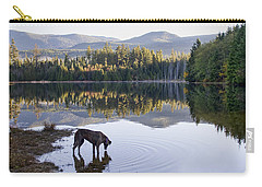 Carry-all Pouch featuring the photograph A Dog At The Lake by Peggy Collins