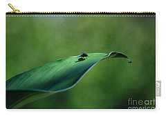 Carry-all Pouch featuring the photograph A Fly And His Shadow by Thomas Woolworth