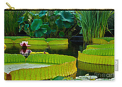 A Garden In Gentle Waters Carry-all Pouch by Byron Varvarigos