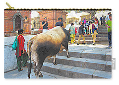 A Holy Cow Climbing Steps From Bagmati River In Kathmandu-nepal  Carry-all Pouch