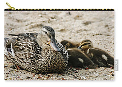A Mother's Love Carry-all Pouch by Barbara Bardzik