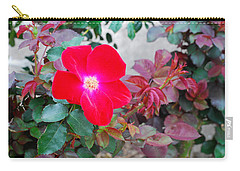 A Real Knockout Carry-all Pouch by Connie Fox