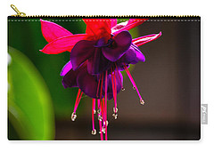 A Special Red Flower  Carry-all Pouch by Gandz Photography