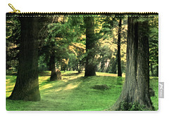 Spring Afternoon In Brookdale Park Carry-all Pouch