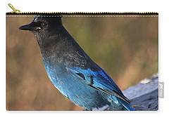 A Stellers Jay On The Boardwalk Carry-all Pouch by Stanza Widen