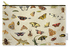 A Study Of Insects Carry-all Pouch by Jan Van Kessel
