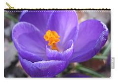 Springjoy Carry-all Pouch
