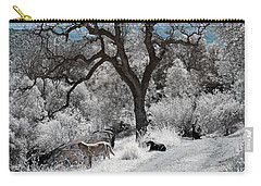A Trail Not Taken Carry-all Pouch