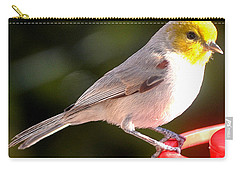 A Visiting Chick Carry-all Pouch by Jay Milo