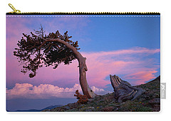 A Westerly Wind Carry-all Pouch
