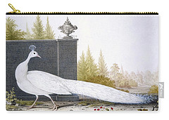 A White Peahen Carry-all Pouch