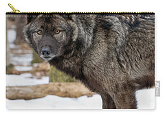 A Wolf's Intense Focus Carry-all Pouch
