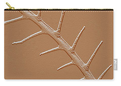 Carry-all Pouch featuring the photograph Abstract Branch Winter Net Leaf Hackberry Tree by Tom Janca
