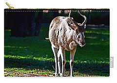 Addax Carry-all Pouch by Miroslava Jurcik