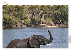 Carry-all Pouch featuring the photograph African Elephant In Chobe River  by Liz Leyden