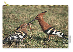 Carry-all Pouch featuring the photograph African Hoopoe Feeding Young by Liz Leyden